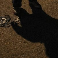 Tráfico de seres humanos, crime vergonhoso diz Papa Francisco