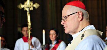 Sínodo arquidiocesano: como estamos?